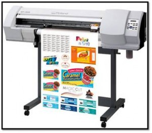 Rolland printer to print Wall Graphics, Window Graphics, Vinyl Printing